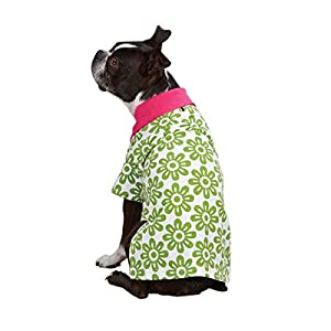 Zack & Zoey Polyester Country Club Dog Polo Shirt, Small, Green