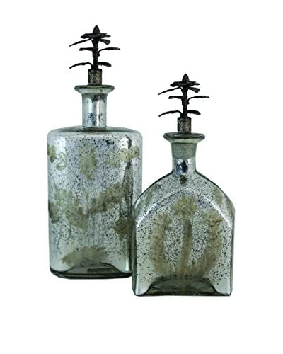 Import Collection Set Of 2 Silver Bottles, Silver