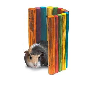 Click to read our review of Rabbit Toys: Super Pet Guinea Pig Tropical Fiddle Sticks Hideout, Medium