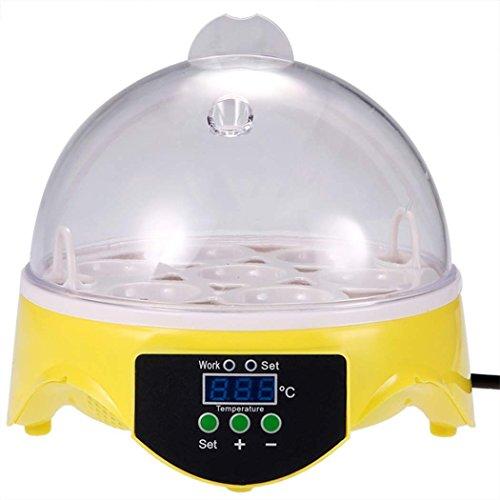 Amdirect 7 Eggs Mini Digital Transparent Chicken Duck Goose Egg Incubator Egg Hatcher (Mini Chickens compare prices)
