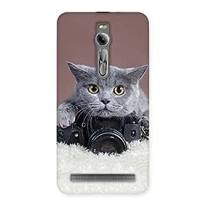 Impressive Kitty Photographer Multicolor Back Case Cover for Asus Zenfone 2