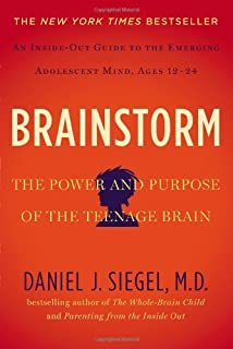 Book Cover: Brainstorm: The Power and Purpose of the Teenage Brain