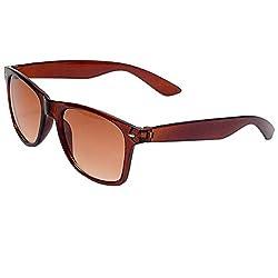 Allen Cate Dual Shade Brown Wayfarer Sunglasses