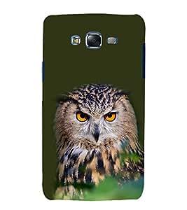 Staring Owl 3D Hard Polycarbonate Designer Back Case Cover for Samsung Galaxy J7 J700F (2015 OLD MODEL) :: Samsung Galaxy J7 Duos :: Samsung Galaxy J7 J700M J700H