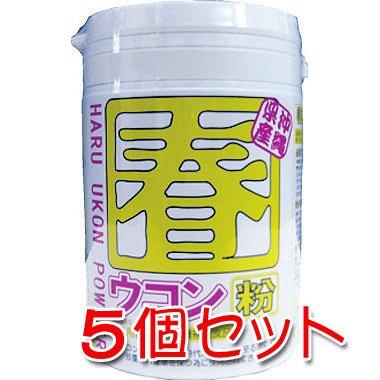 沖縄県産 春ウコン粉100g 5個セット