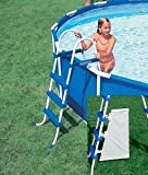 Image of Intex 42-Inch Pool Ladder with Barrier