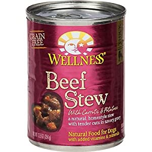 Wellness Beef Stew Can Dog Food 12 Pack