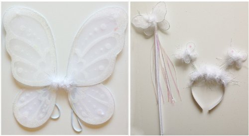 Fairy Butterfly Wings - 3 Piece Set