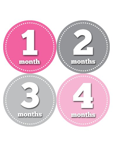 Months in Motion 063 Monthly Baby Stickers Baby Girl Month 1-12 Milestone Age