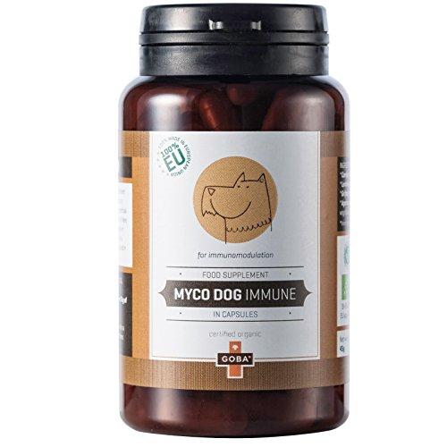 goba-myco-dog-immune-organic-mushroom-powder-blend-for-dogs-90-capsules-100-made-in-eu-tausendkraut