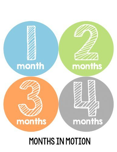 Months in Motion 108 Monthly Baby Stickers Baby Boy Milestone Age Sticker Photo