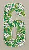 Wheelie bin numbers Ivy 6