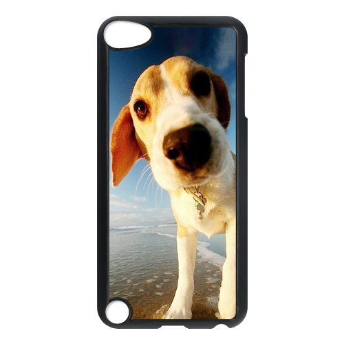 iPod 5 Cases - Husky,Poodle,Beagle,Puppy Dog Waterproof Case for Apple iPod Touch 5th Generation,iPod Touch 5 Case,Screen Protector for iPod Touch 5/5th generation (Black/white)