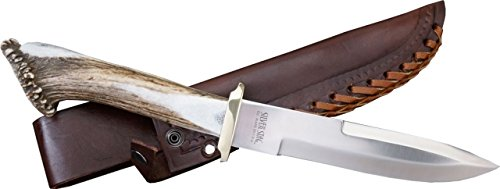 Silver Stag Pacific Bowie Fixed Knife, D2 tool steel blade, Round design shed deer or elk antler