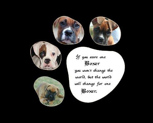 Save One Boxer Saying Wall Decor Rescued Dog Keepsake Gift Saying