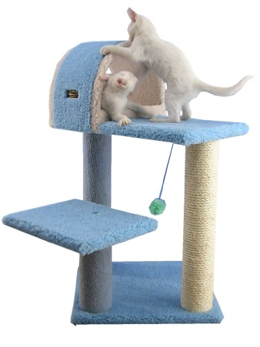 Armarkat Cat Tree Model B2903, Sky Blue Armarkat B003BYQ1FU
