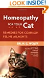 Homeopathy for Your Cat: Remedies for Common Feline Ailments