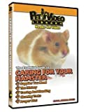 Caring For Yor Small Pet DVD Hamster