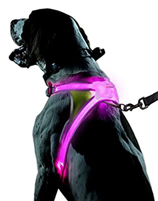 Noxgear LightHound - Revolutionary Illuminated and Reflective Harness for Dogs Including Multicolored LED Fiber Optics (USB Rechargeable, Adjustable, Lightweight, Rainproof)
