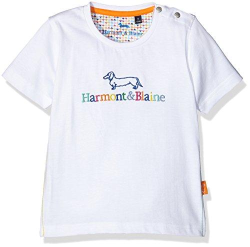 Harmont & Blaine junior T-Shirt Istituzionale R. Multicolor, Maglietta Bambino, Bianco, 4y