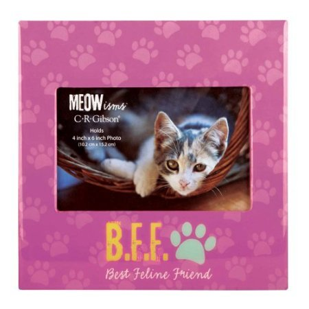 C.R. Gibson Meowisms Photo Frame, B.F.F. 'Best Feline Friend' - 1