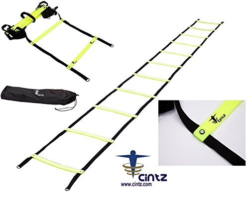 Cintz 15' Fixed Rungs Speed Agility Ladder with carry bag and ground anchors