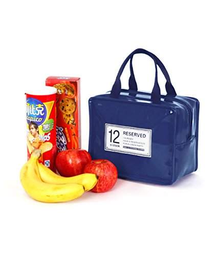 G2Plus Waterproof Insulated Cooler Lunch Bag/Tote Travel Zipper Organizer Box (Dark Blue)