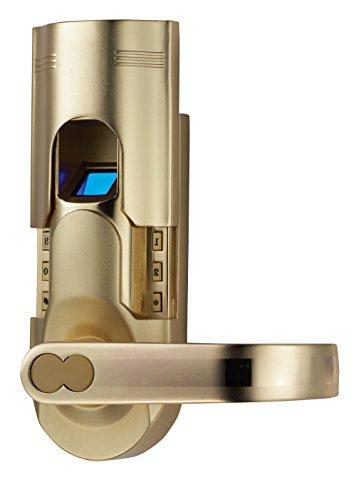 Digi Electronic Biometric Fingerprint + Keypad Password Door Lock Set Intersected Gold (Right Hand Door)