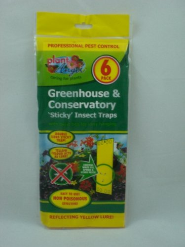 GREENHOUSE AND CONSERVATORY STICKY INSECT TRAPS