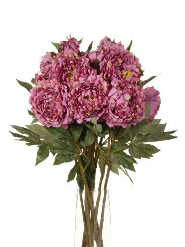 Closer To Nature Kunstblumen, Pfingstrosen, 80 cm, 2 Blüten pro Stiel, Dunkelpink, 12 Stück