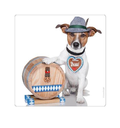aimant-de-refrigerateur-chico-de-bayer-chien