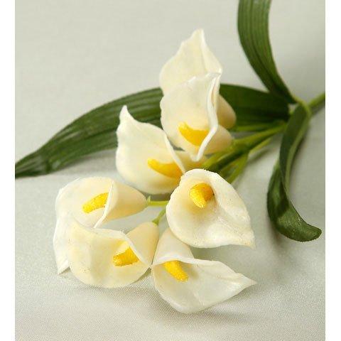 floral-supplies-calla-lily-pick-10