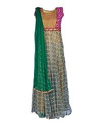 Noore Nazar Glitzy Multicolor Half sleeve printed net Hand Work Anarkali Dress