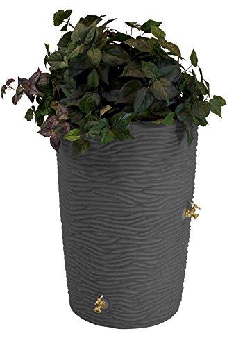 Good-Ideas-IMP-L50-DAR-Impressions-Palm-Rain-Barrel-50-Gallon-Dark-Granite