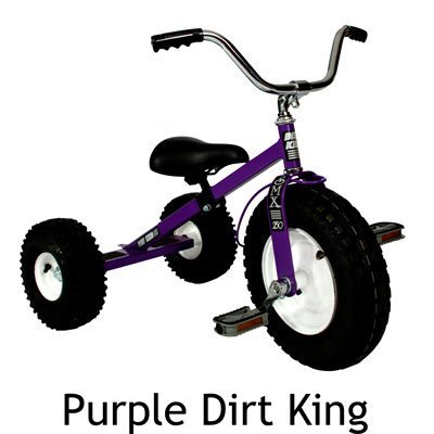 Dirt King USA Children's Tricycle - Purple