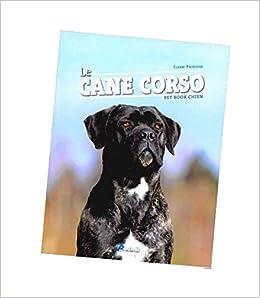 Find a Puppy Cane Corso