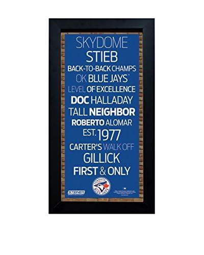 Steiner Sports Memorabilia Framed Toronto Blue Jays Desktop/Wall Hangable Subway Sign Wall Art