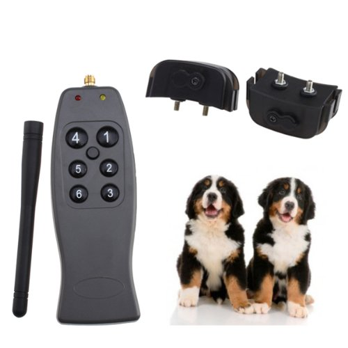Two Dogs Rechargeable Remote Training Collar With Lcd Display, Vibration And 3 Levels Of Shock
