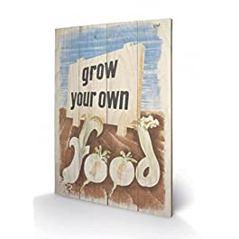 Vintage - Grow Your Own Food Cuadro De Madera (60 x 40cm)