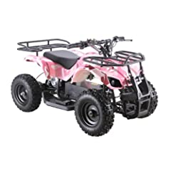Sonora 500 Watt 36 Volt Electric Powered ATV W reverse by Go-Bowen