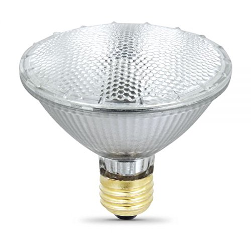 55W Halogen Light Bulb