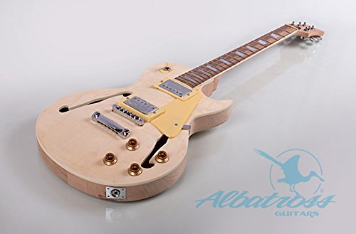 Albatross Guitars GK014 Semi Hollow Body Electric Guitar (Semi Hollow Electric Guitar compare prices)