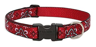 Lupine 3/4 Inch Wet Paint Adjustable Dog Collar