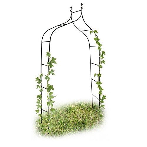 Relaxdays 10017904 Arco da Giardino Decorazioni per il Giardino per Le Piante Rampicanti Metallo Verniciato 2,4 Metri Altezza