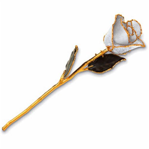 24kt Gold Trimmed Lacquered Dipped Real White Rose