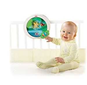 Fisher-Price Rainforest Waterfall Peek-a-Boo Soother (Discontinued by Manufacturer)