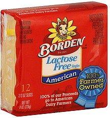 BORDEN CHEESE AMERICAN SINGLES LACTOSE dp BCSYYHS