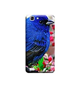 Ebby Premium Printed Back Case Cover With Full protection For vivo X5 (Designer Case)