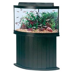 Amazon.com : All Glass Aquarium AAG55054 Pine Cabinet, 54ct : Aquarium ...
