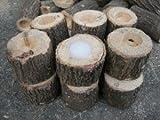 阿古谷オオクワ園 朽ち木 エサ皿 ワイドゼリー16g用 1穴  Lサイズ